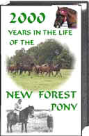 New Forest Pony, 2000 Years in the Life of